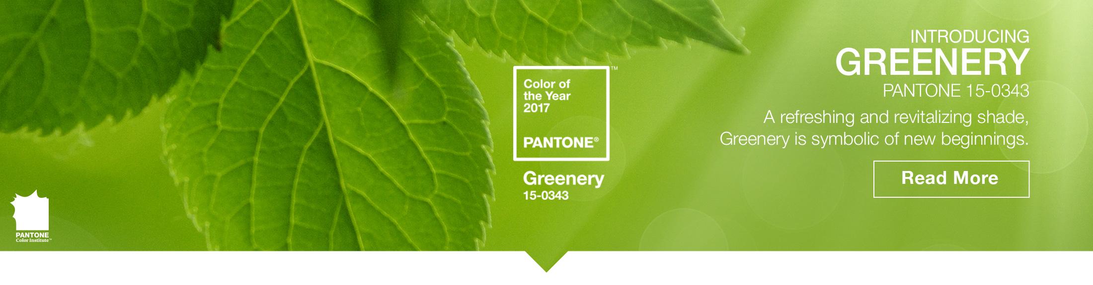 pantone colore verde - Di Giacomo pavimenti